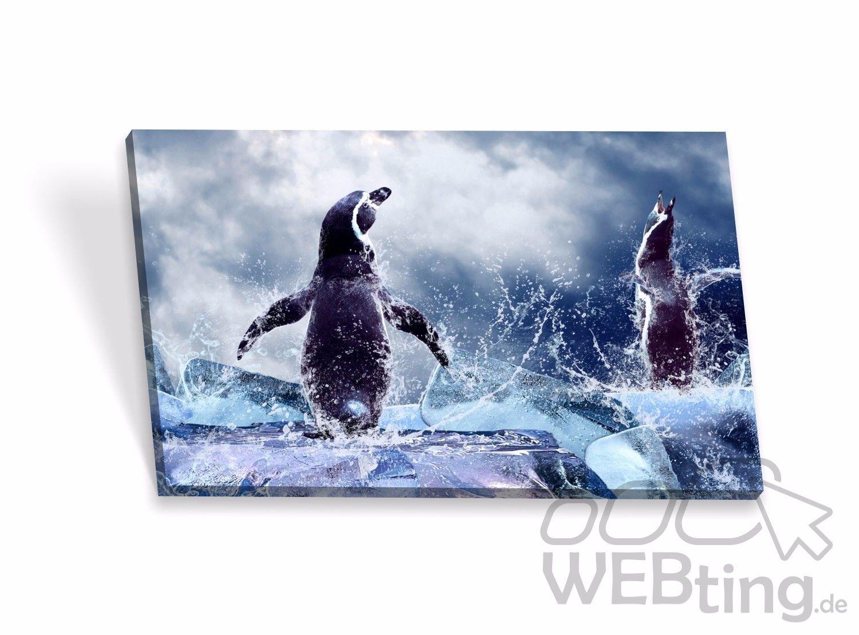 leinwandbilder antarktis keilrahmenbilder keilrahmen bilder poster leinwand bild. Black Bedroom Furniture Sets. Home Design Ideas